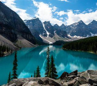 Обои на телефон озеро, природа