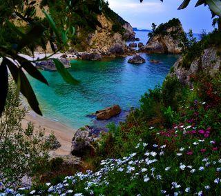 Обои на телефон тропические, рай, пляж, океан, море, вода, tropical alcove