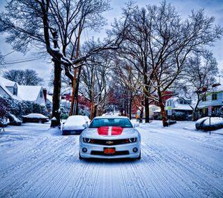 Обои на телефон шторм, снег, мускул, машины, классные, камаро, snow storm camaro, snow storm, camaro ss