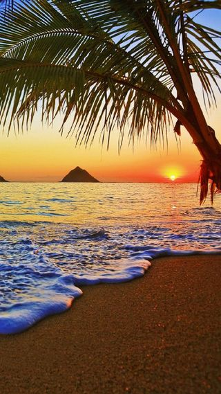 Обои на телефон тропические, рай, океан, пляж, пальмы, новый, море, крутые