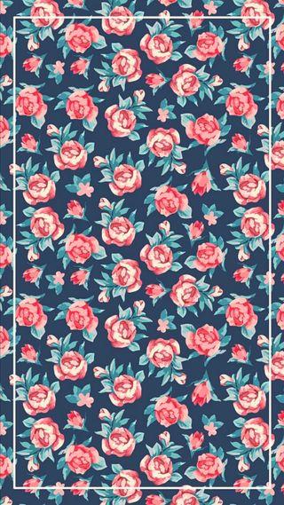 Обои на телефон цветы, розовые, природа, rosas, primavera, hd, girasol, fondo