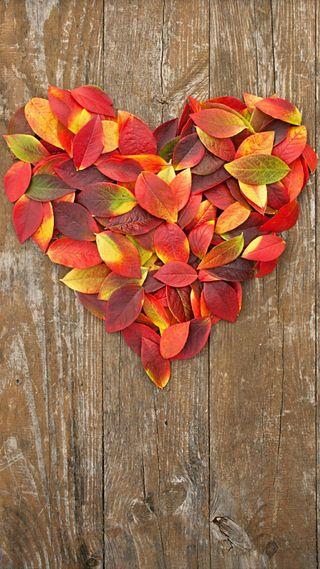 Обои на телефон формы, сердце, природа, листья, дерево