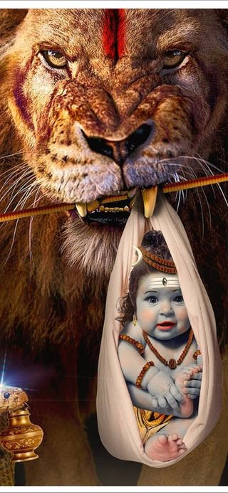 Обои на телефон hd, лев, король, мир, вселенная, господин, шива, индийские