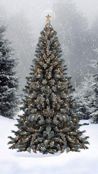 Обои на телефон праздник, снег, рождество, огни, дерево