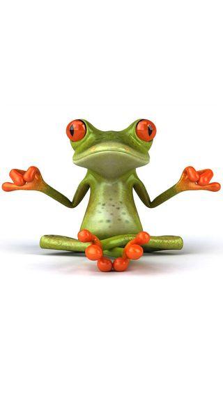 Обои на телефон лягушка, дзен, милые, йога, meditating, cute frog