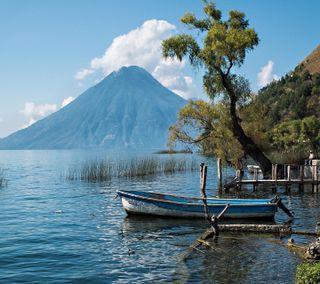 Обои на телефон взгляд, приятные, озеро, лодка, дерево, tree lake boats