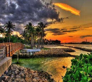 Обои на телефон тропические, пляж, пальмы, море, закат, берег
