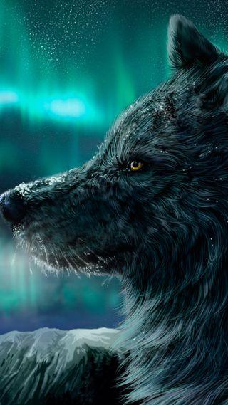Обои на телефон ночь, небо, звезды, животные, волк, nocturnal wolf