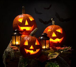Обои на телефон hd, halloween qhd, хэллоуин, праздник, тыква