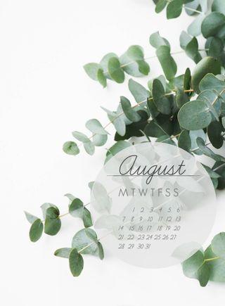 Обои на телефон календарь, чистые, зеленые, август, clean green, aug