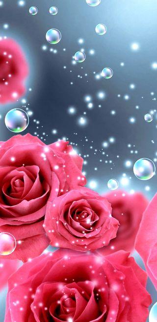 Обои на телефон dark bubblesnroses, темные, розовые, прекрасные, цветы, розы, симпатичные, девчачие, пузыри, волшебные
