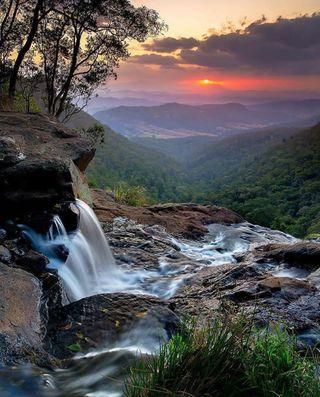 Обои на телефон джунгли, природа, красота, закат, восход, австралия, nature beauty