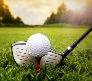 Обои на телефон гольф, трава, спорт, клуб, turf