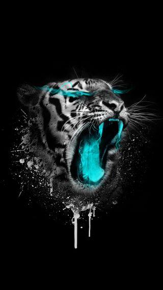 Обои на телефон безумные, черные, хвост, тигр, сказочные, символы, символ, кошки, жуткие