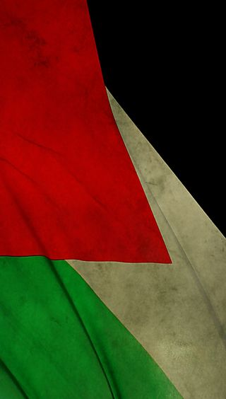 Обои на телефон флаги, флаг, арабские, palestine