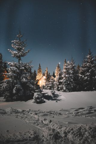 Обои на телефон холод, снег, ночь, небо, лес, коттедж, зима, горы, nightsky, cold winter