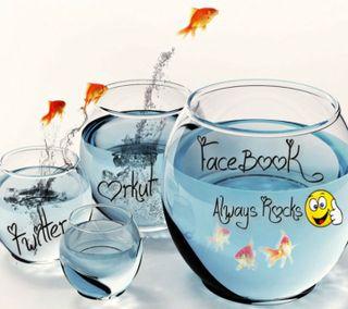 Обои на телефон фейсбук, последние, рок, приятные, поговорка, новый, милые, камни, hd, facebook rocks, 3д, 3d, 2013