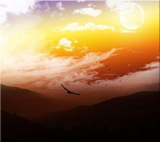 Обои на телефон анимационные, топ, птицы, природа, оранжевые, облака, лучшие, крутые, восход, sunrise 3d, hd, 3д, 3d, 2012