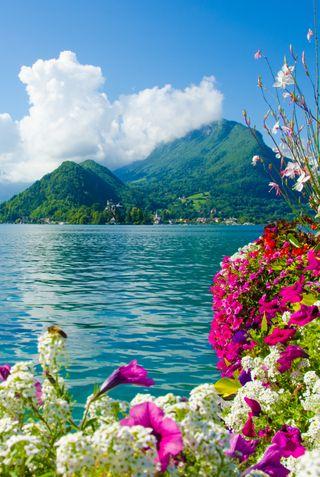 Обои на телефон цвести, лето, природа, пейзаж, облака, горы