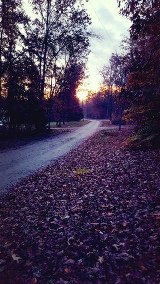 Обои на телефон осень, дорога, день, восход