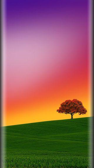 Обои на телефон стиль, природа, красочные, красота, дерево, грани, s7, edge style