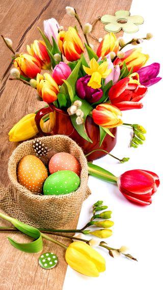 Обои на телефон яйца, тюльпаны, пасхальные, счастливые, happy
