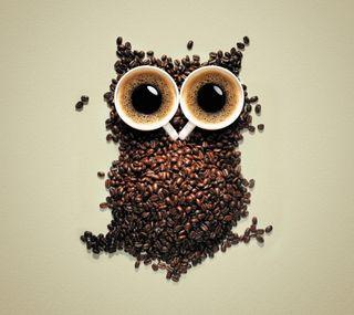 Обои на телефон сова, птицы, крутые, дизайн, coffe bean owl, coffe