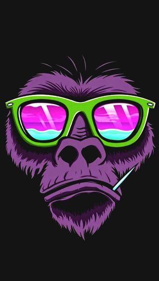 Обои на телефон очки, обезьяны, зеленые