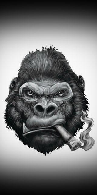 Обои на телефон обезьяны, funky