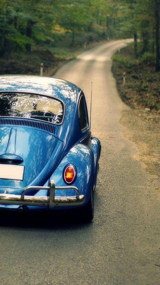 Обои на телефон фольксваген, синие, новый, машины, лес, классика, жук, volkswagen beetle, classic car