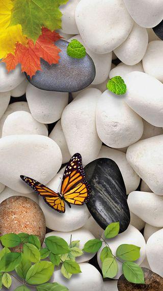 Обои на телефон mapple, белые, бабочки, листья, камни, дзен
