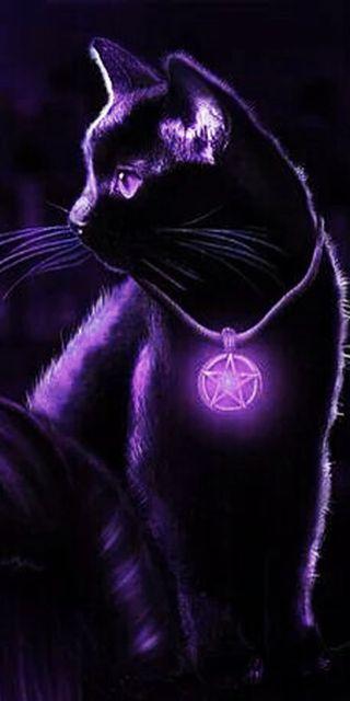 Обои на телефон котята, черные, фиолетовые, магия, кошки