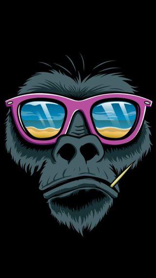 Обои на телефон обезьяны, bdv