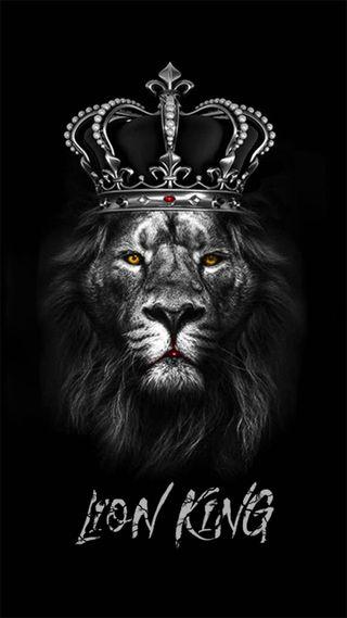 Обои на телефон черные, лев, король