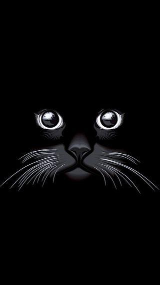 Обои на телефон кошки, черные