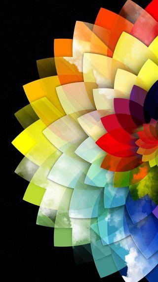 Обои на телефон топ, цветы, цветные, темные, природа, прекрасные, популярные, новый, крутые