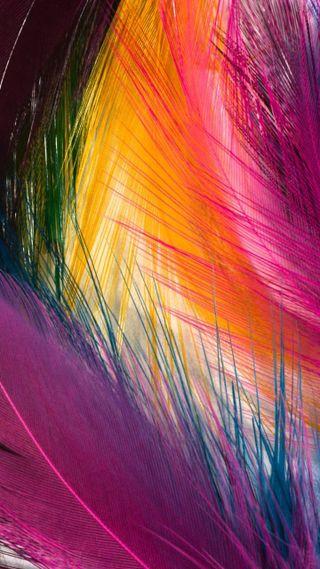 Обои на телефон перо, прекрасные, красочные, абстрактные