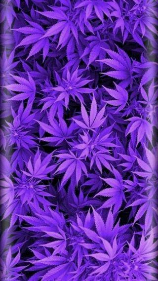 Обои на телефон небеса, яркие, фиолетовые, природа, прекрасные, поездка, небо, мечта, красочные, космос, кислота, земля, звезды, грани, бог, purple pot, hd, 3д, 3d