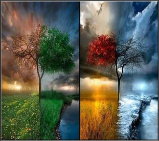 Обои на телефон стена, сезон, рокки, природа, огонь, новый, небо, любовь, красые, зеленые, времена года, вода, love, 4 seasons wall hd, 2012