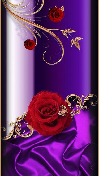 Обои на телефон символы, символ, розы