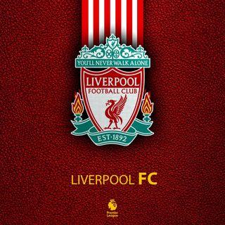 Обои на телефон футбольные клубы, прайд, футбольные, футбол, прогулка, одиночество, никогда, ливерпуль, клуб, nwal, never walk alone