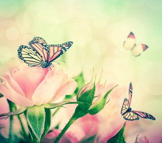 Обои на телефон винтаж, фон, розы, розовые, бабочки, абстрактные