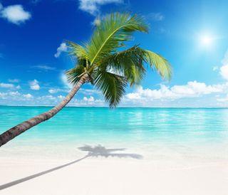 Обои на телефон солнечный свет, тропические, рай, пляж, песок, sand tropical