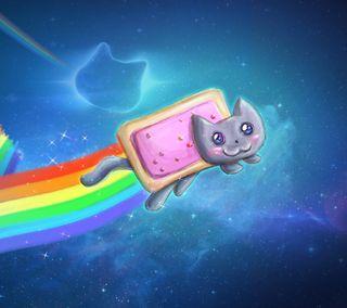 Обои на телефон хаха, лол, неоновые, мяу, кошки, котята, космос, забавные, tart, nyan, lol