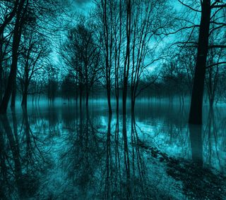 Обои на телефон сияние, синие, природа, озеро, деревья