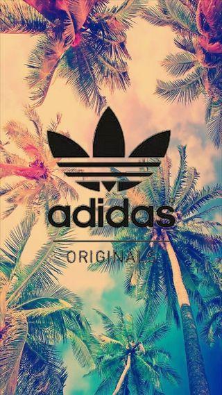 Обои на телефон логотипы, деревья, бренды, адидас, adidas originals, adidas