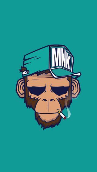 Обои на телефон чикаго, обезьяны