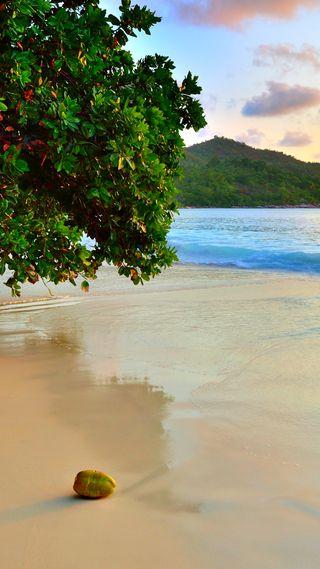 Обои на телефон айфон 6, природа, пляж, айфон 5, beach hd