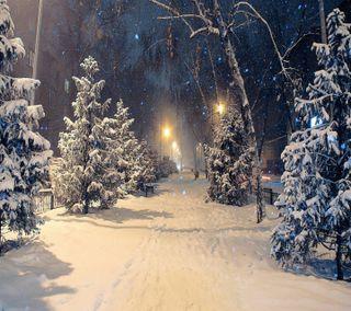 Обои на телефон winter snowfall, ночь, белые, зима, снег, огни, деревья, светящиеся, путь, тропа