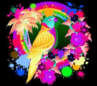 Обои на телефон попугай, радуга, природа, пейзаж, любовь, вид, абстрактные, rainbow parrot, love